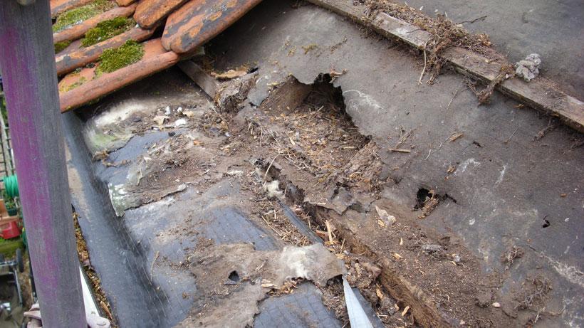 Water damage to older property